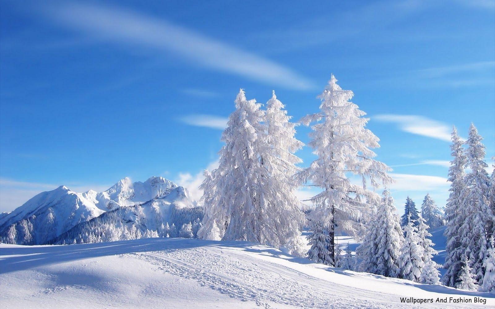 winter desktop wallpapers scenes
