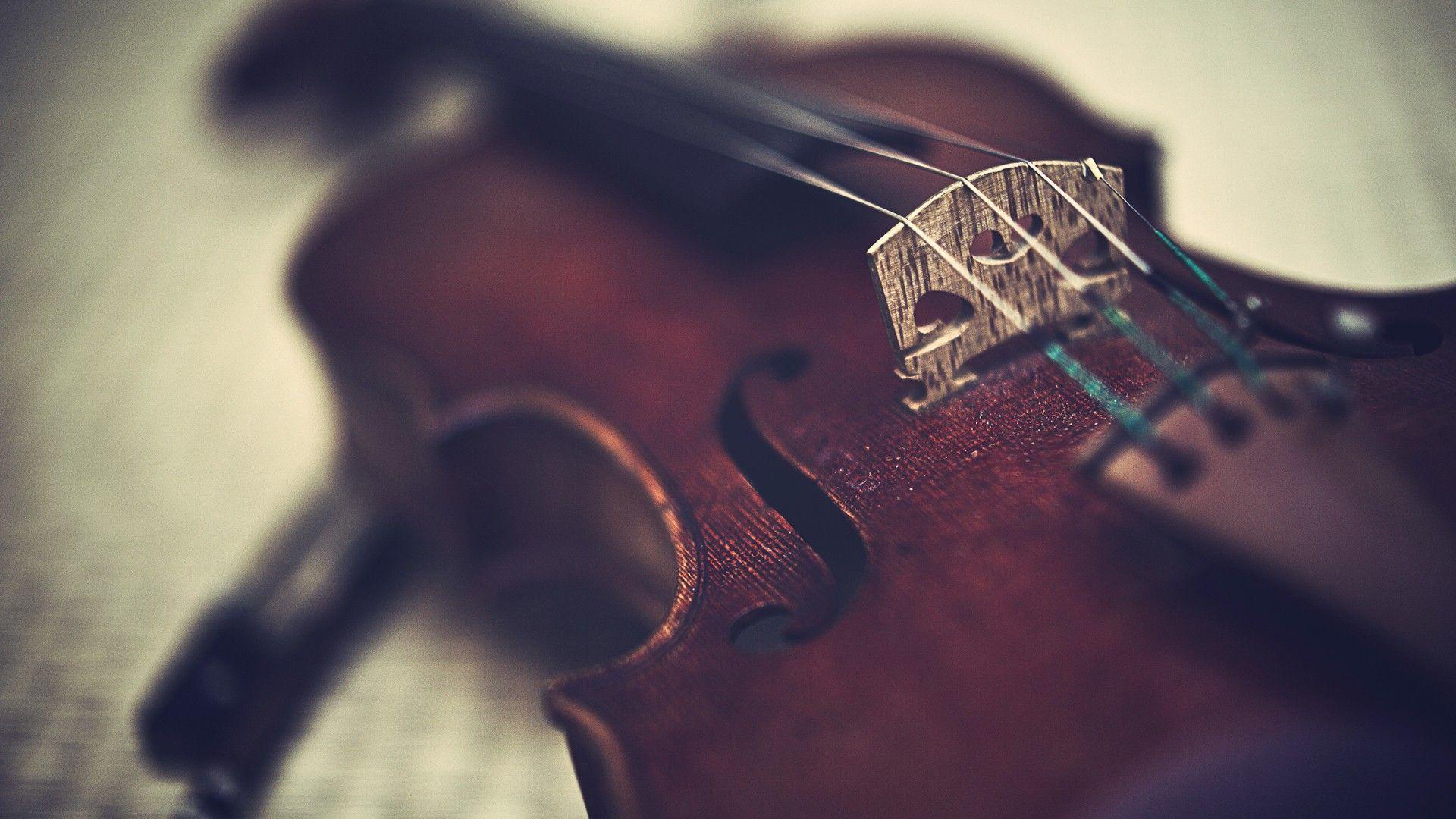Violin Is An Instrument Wallpaper HD 8715 #3135 Wallpaper | High ...