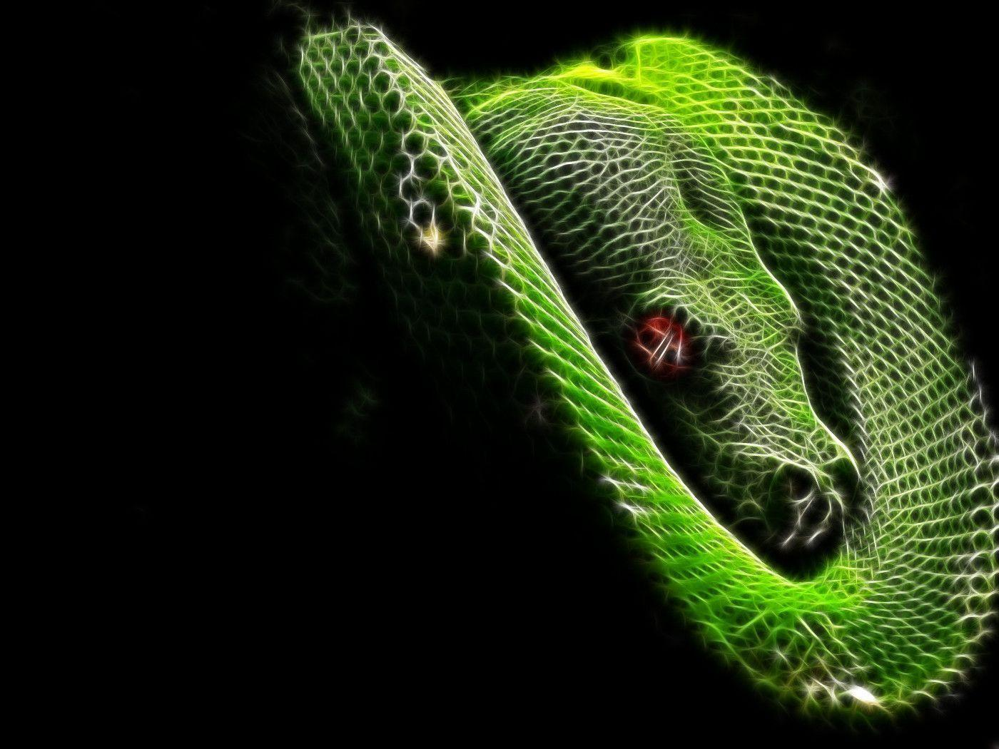 the snake wallpapers - photo #43