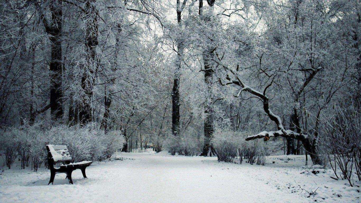 Snow HD Wallpapers 1366x768 For Desktop Backgrounds