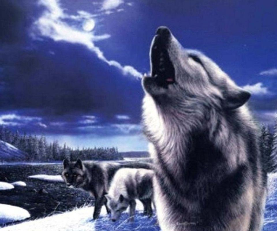 Winter Wolf animals wallpapers for Apple iPhone 4S 16GB