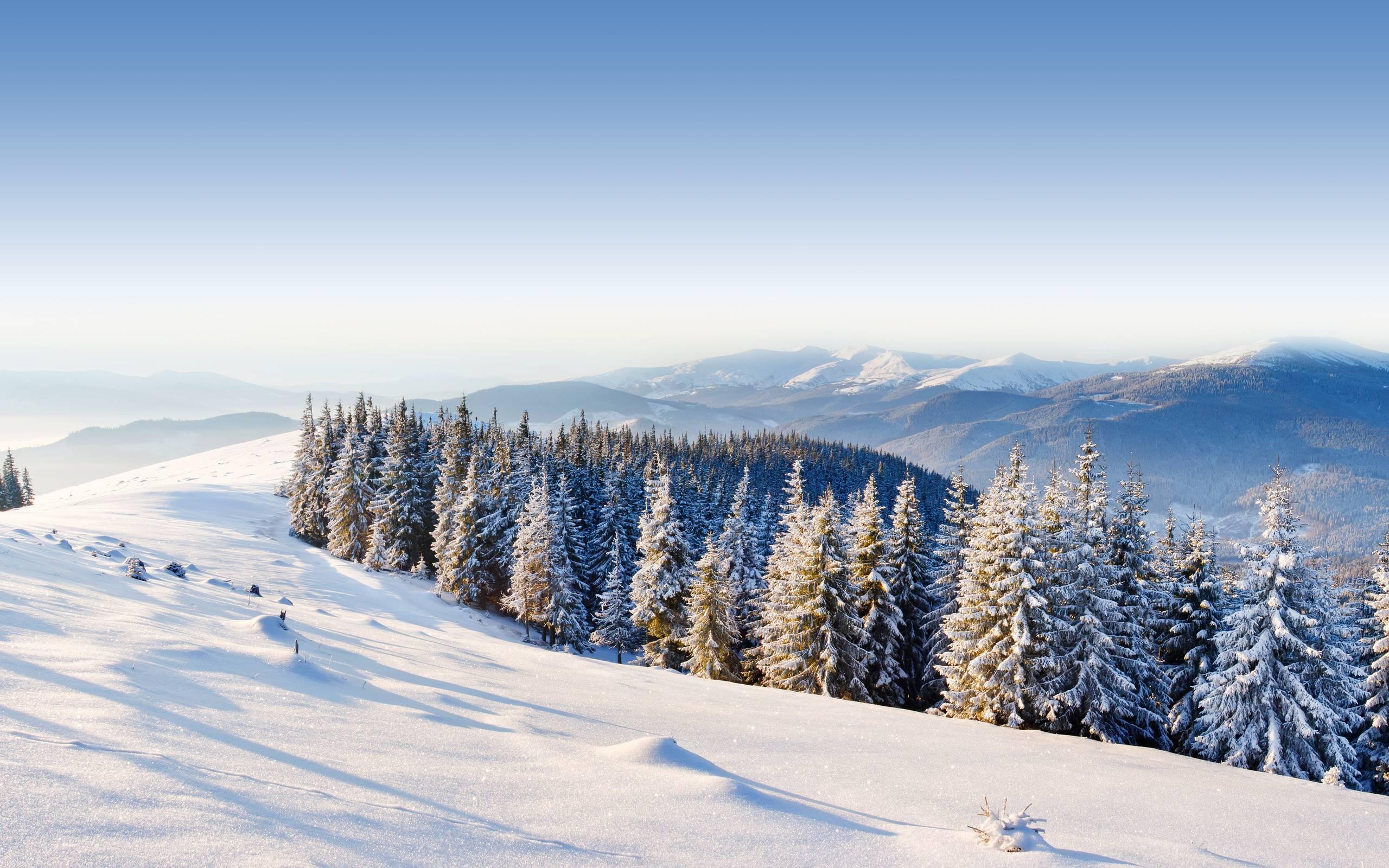 Top Wallpaper Mountain Winter - ZT136cA  Trends_23488.jpg