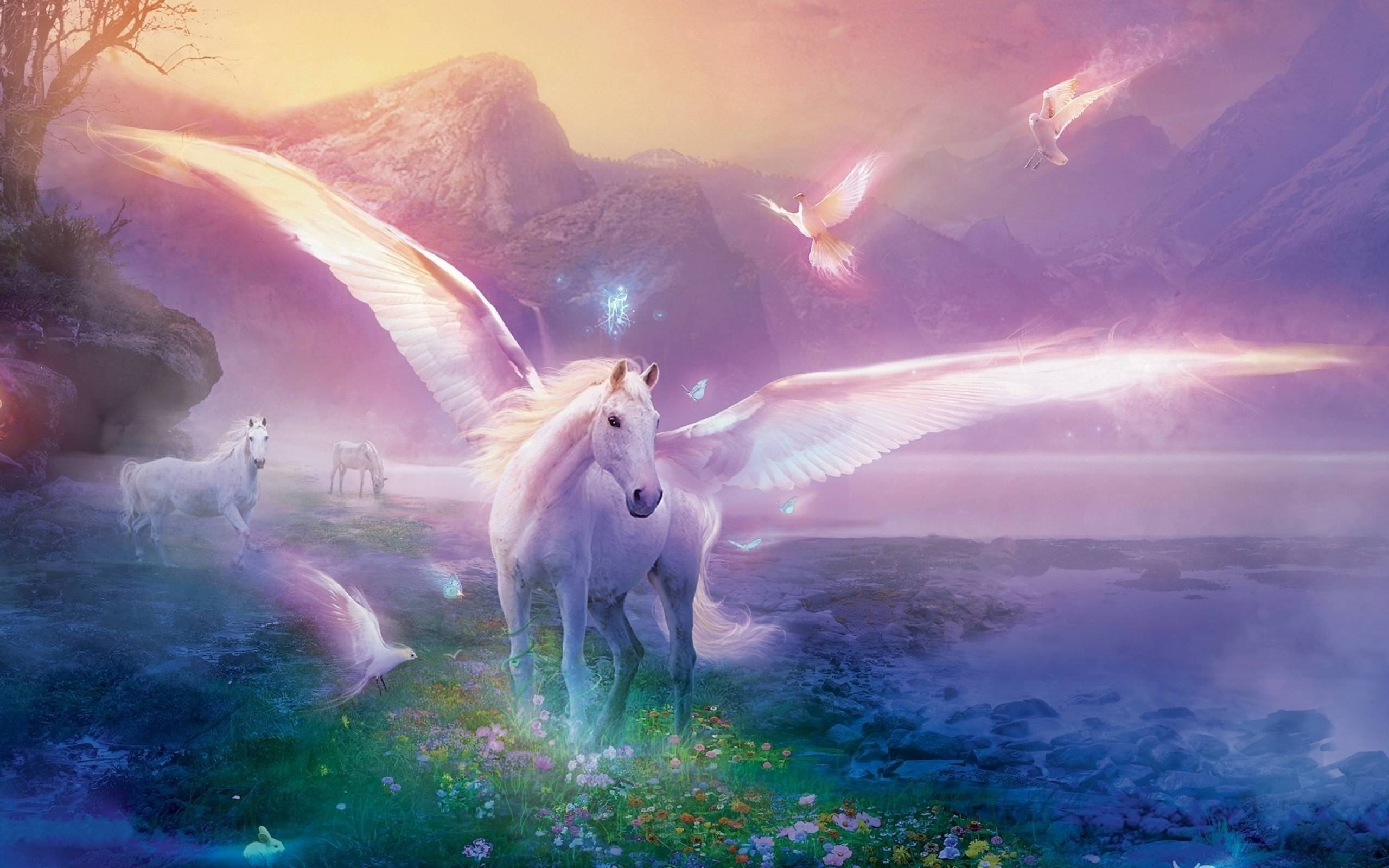53 unicorn wallpapers unicorn backgrounds