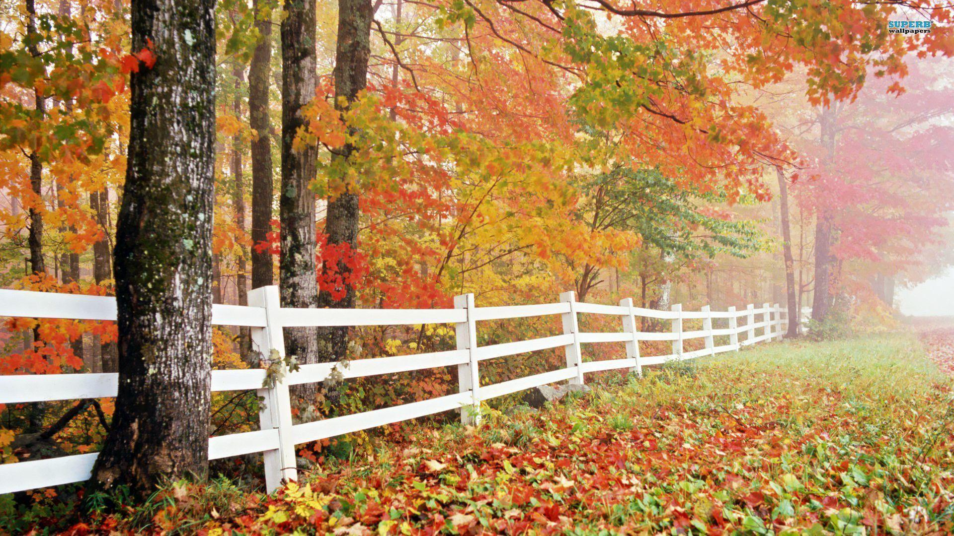 10 Latest Fall Country Backgrounds For Computer Full Hd: Autumn Wallpapers 1920x1080