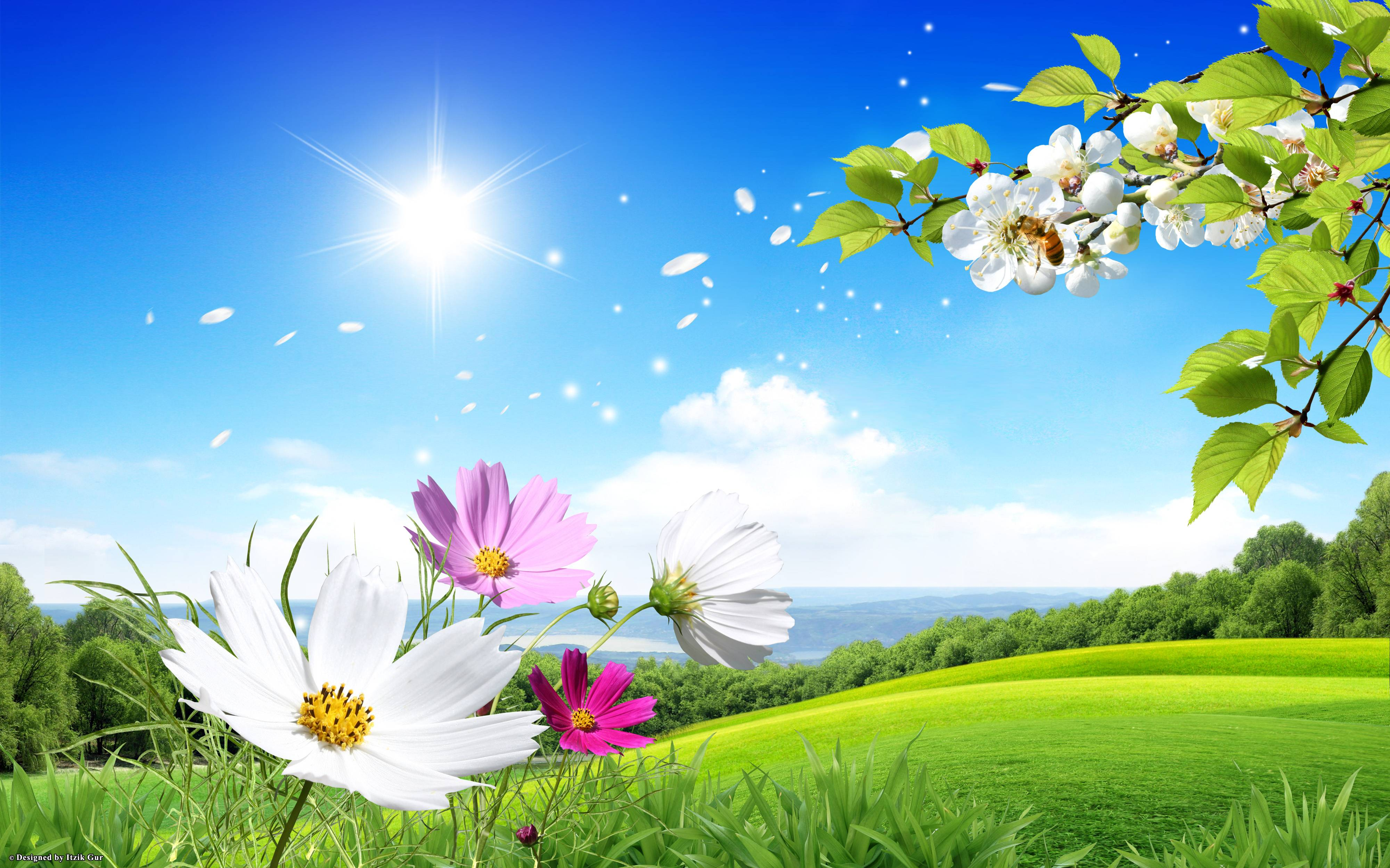 Download Spring Scene Flowers Green Field Nature Wallpapers