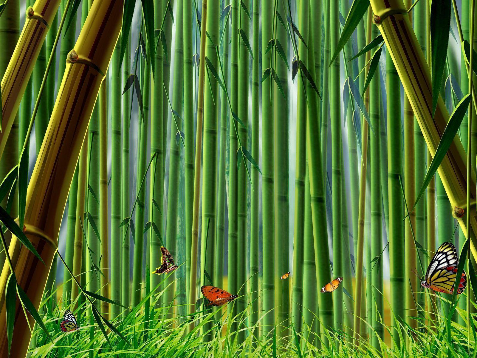 bamboo wallpaper by doantrangnguyen - photo #3