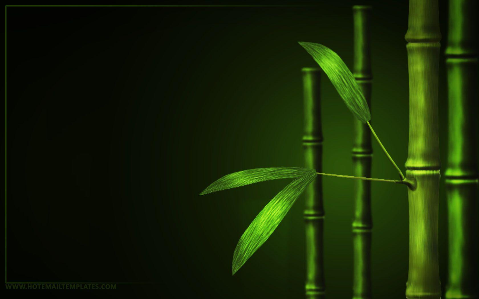 wallpapers bamboo