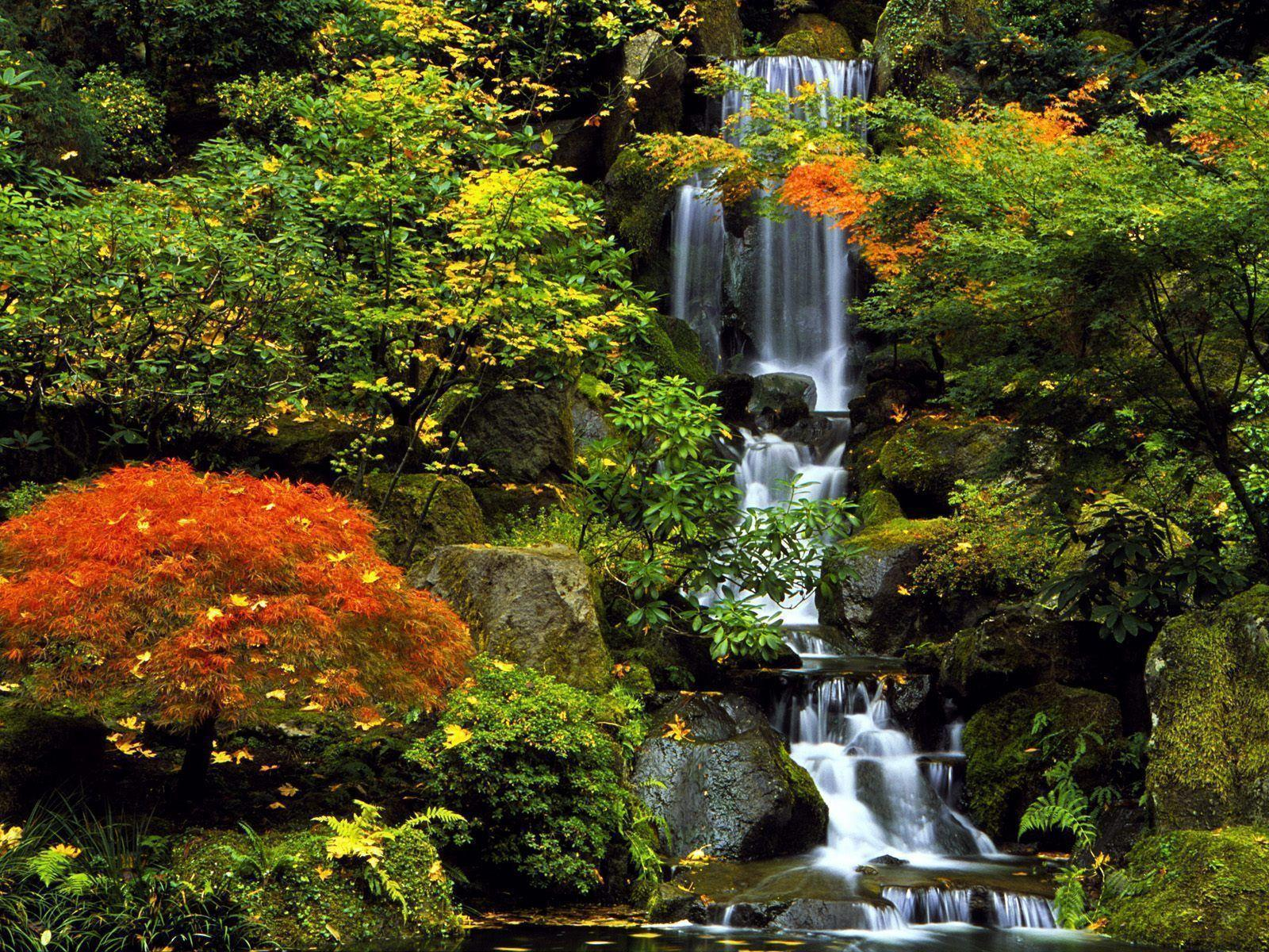 peartreedesigns: Japan Nature and landscape