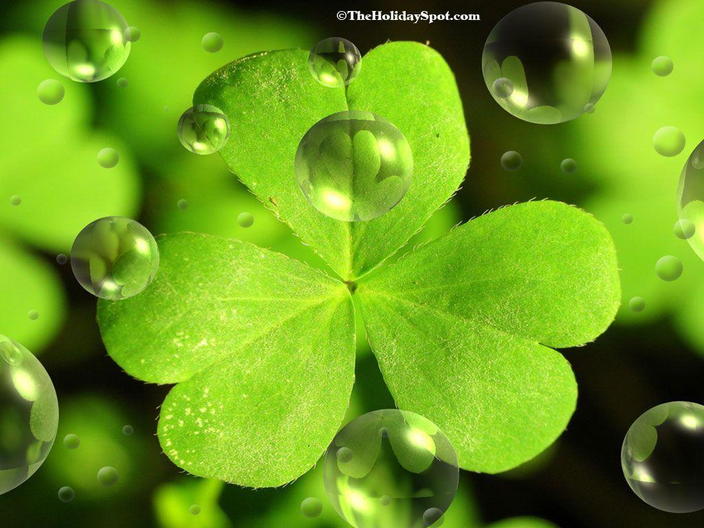 patricks day shamrock background - photo #2