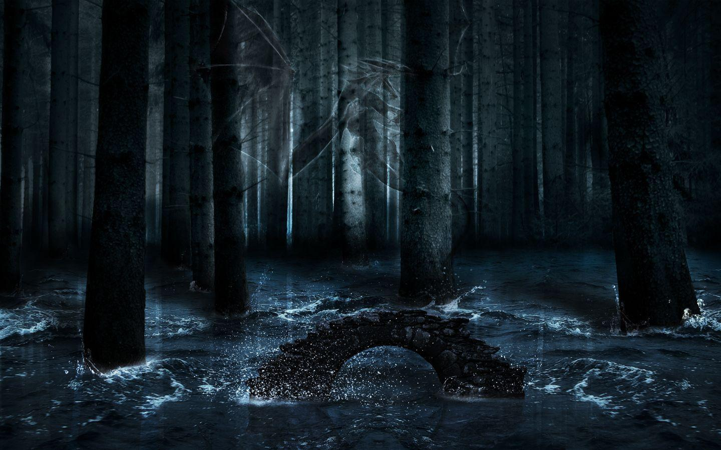 Wallpapers For > Desktop Backgrounds Dark Forest
