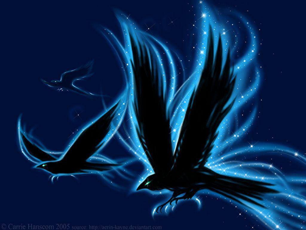 Ravens backgrounds