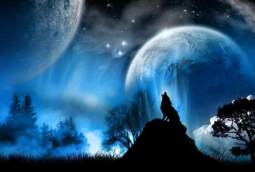 Wolf Howling At The Moon Wallpapers