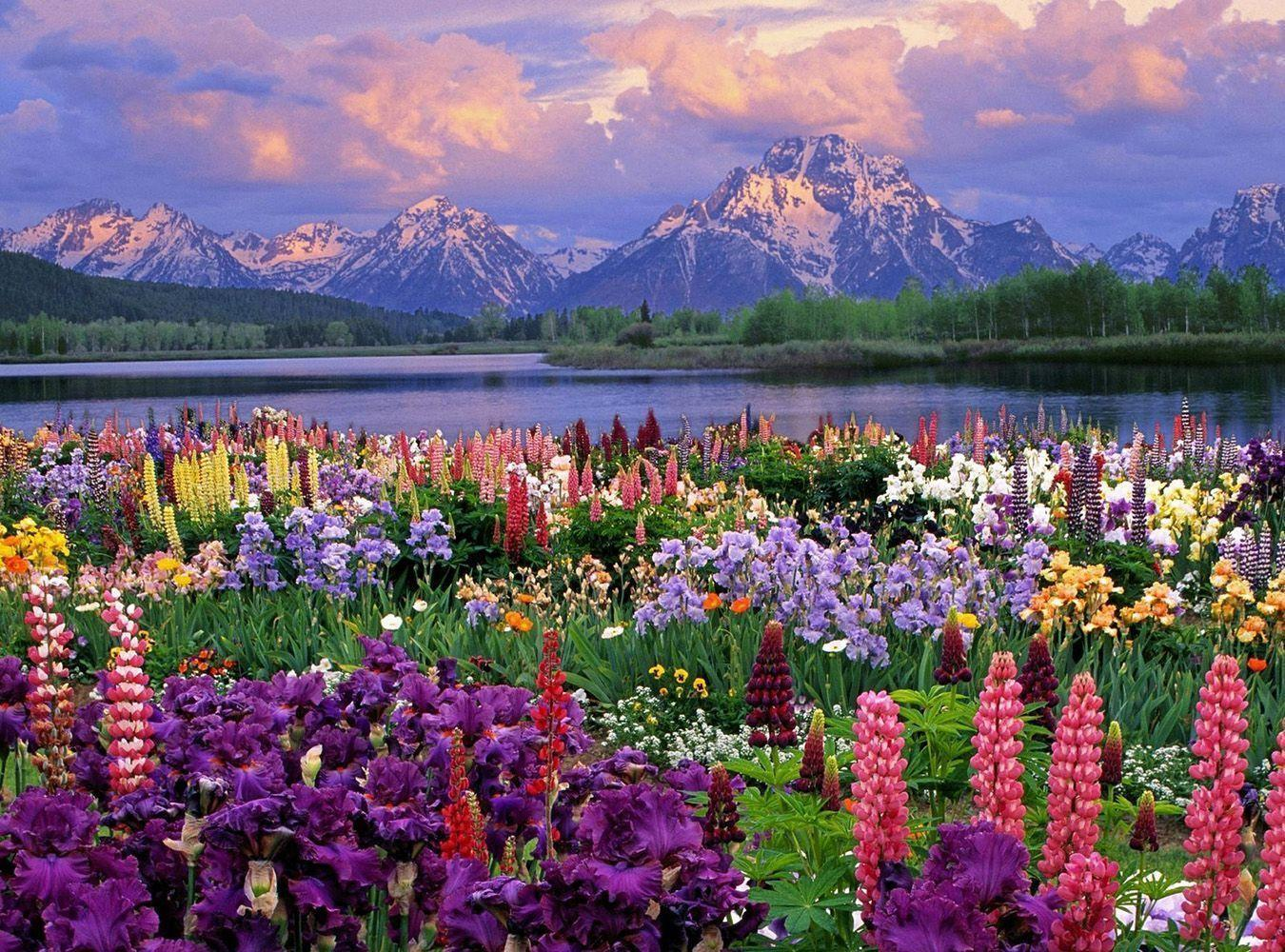 beautiful spring scene with lake and mountains high definition
