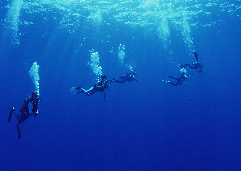 Scuba diving wallpapers wallpaper cave - Porno dive hd ...