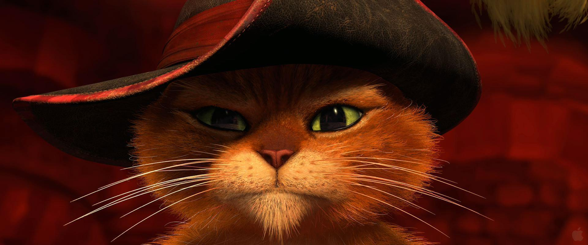 puss in boots desktop - photo #6