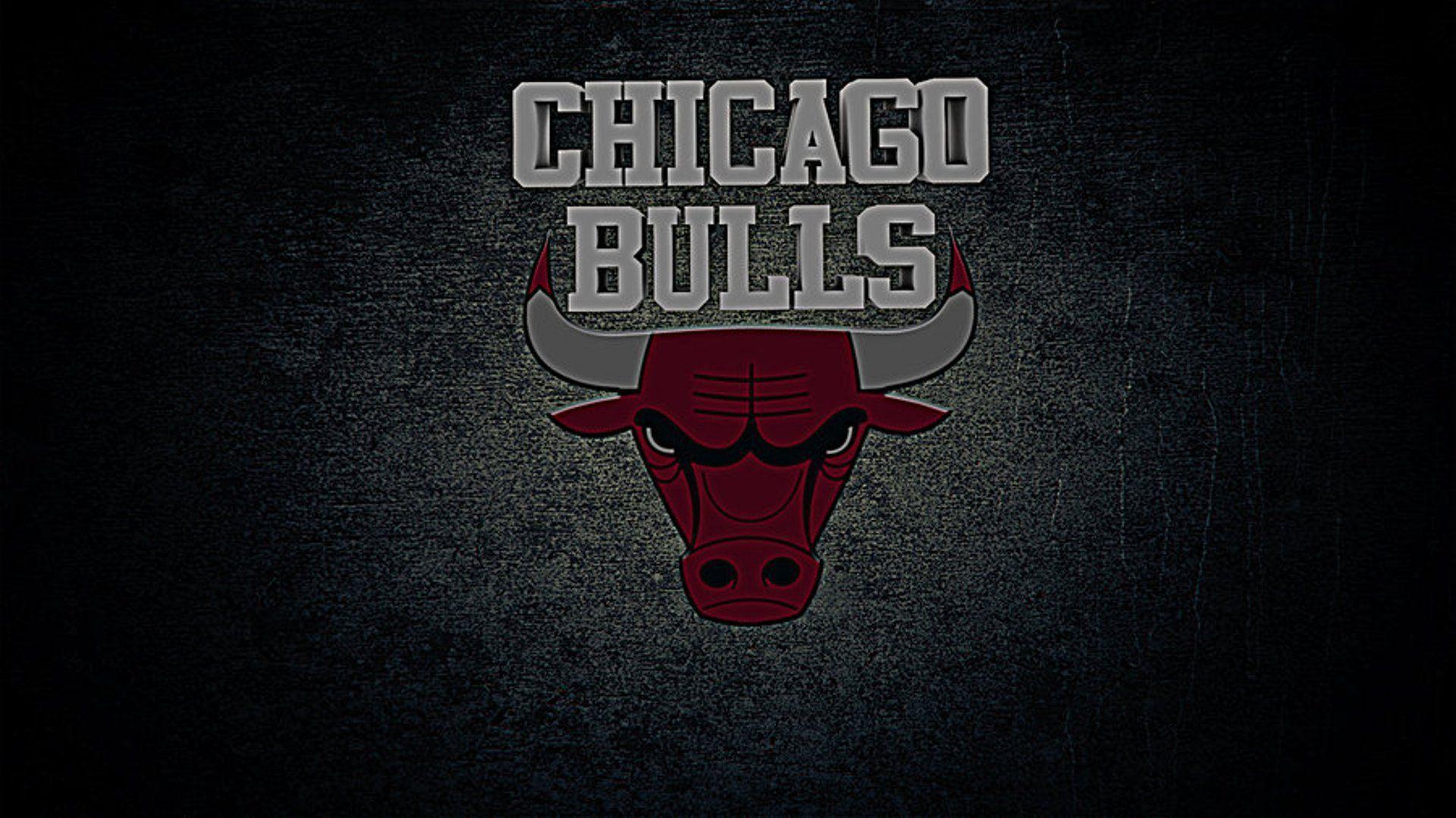 Chicago Bulls Logo Wallpaper Logo, Sport Wallpapers HD - Wallpapers HD