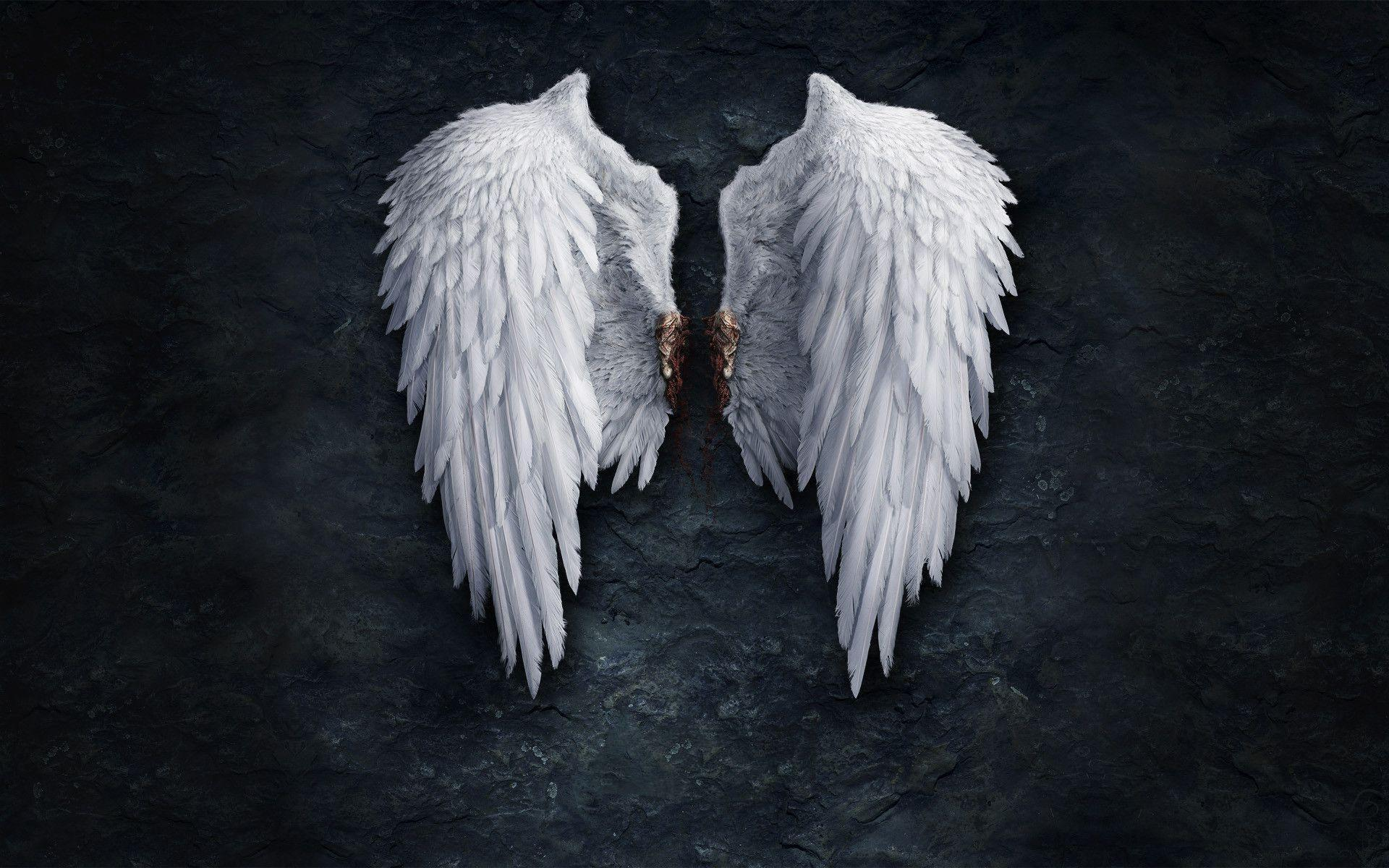 Angel Wing Backgrounds