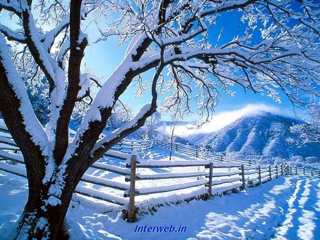 Wallpapers For > Beautiful Snow Falling Wallpapers
