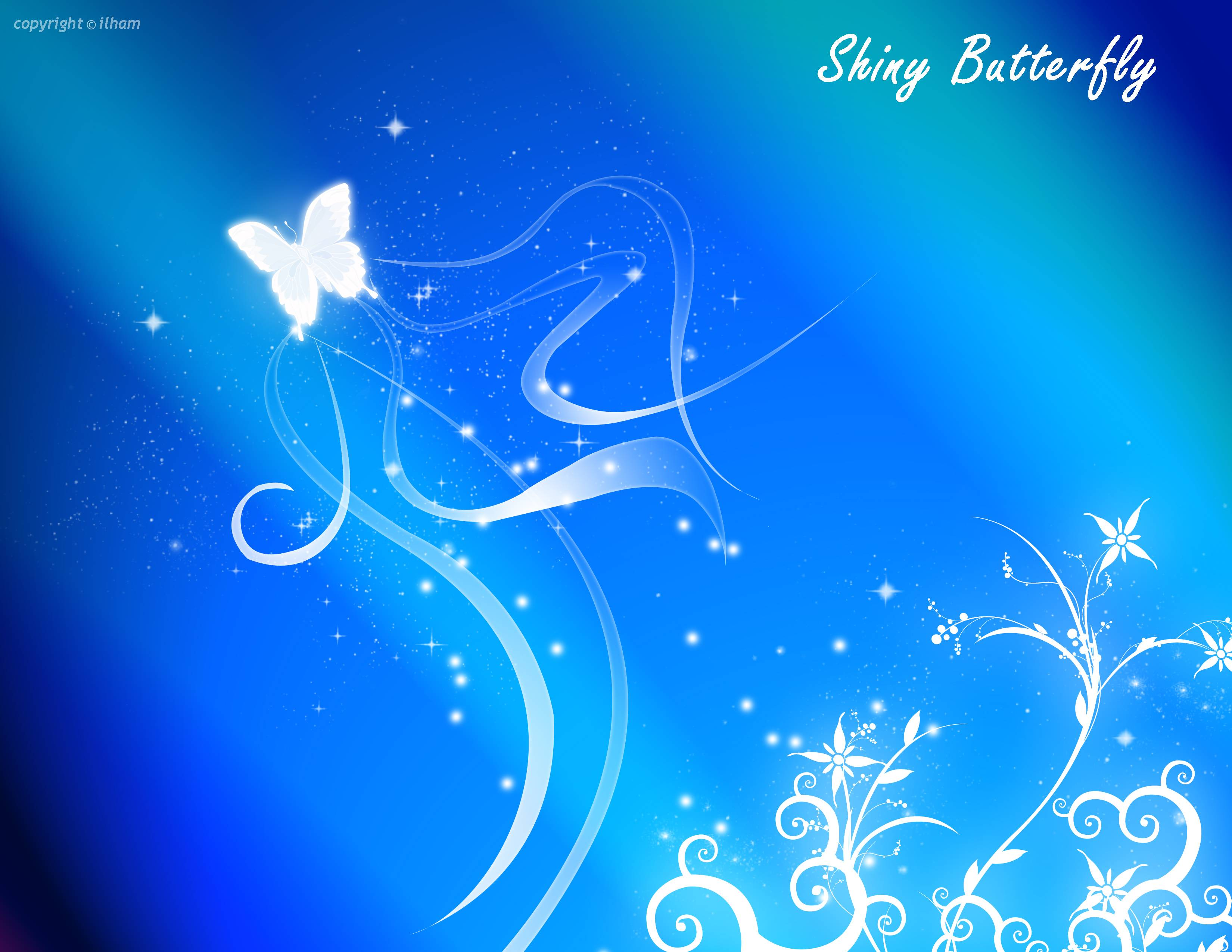 Wall paper design butterfly : Blue pictures wallpapers wallpaper cave