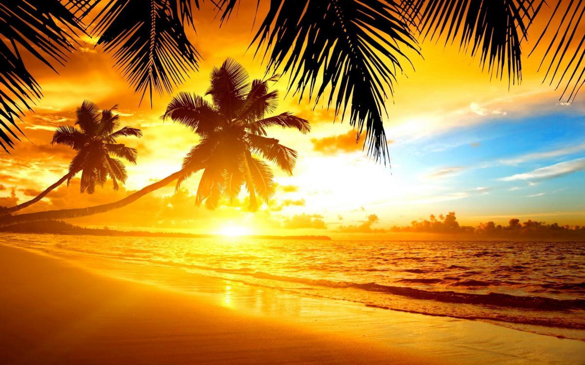 Tropical Island Beach Sunset Wallpaper 3953