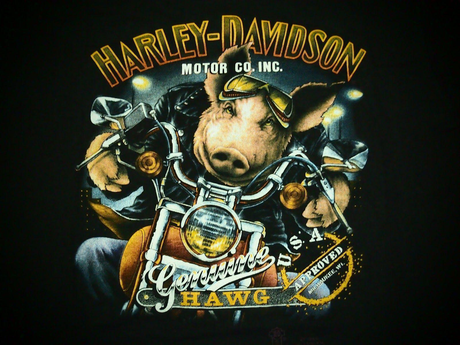 Harley Davidson 3d Wallpapers Wallpaper Cave