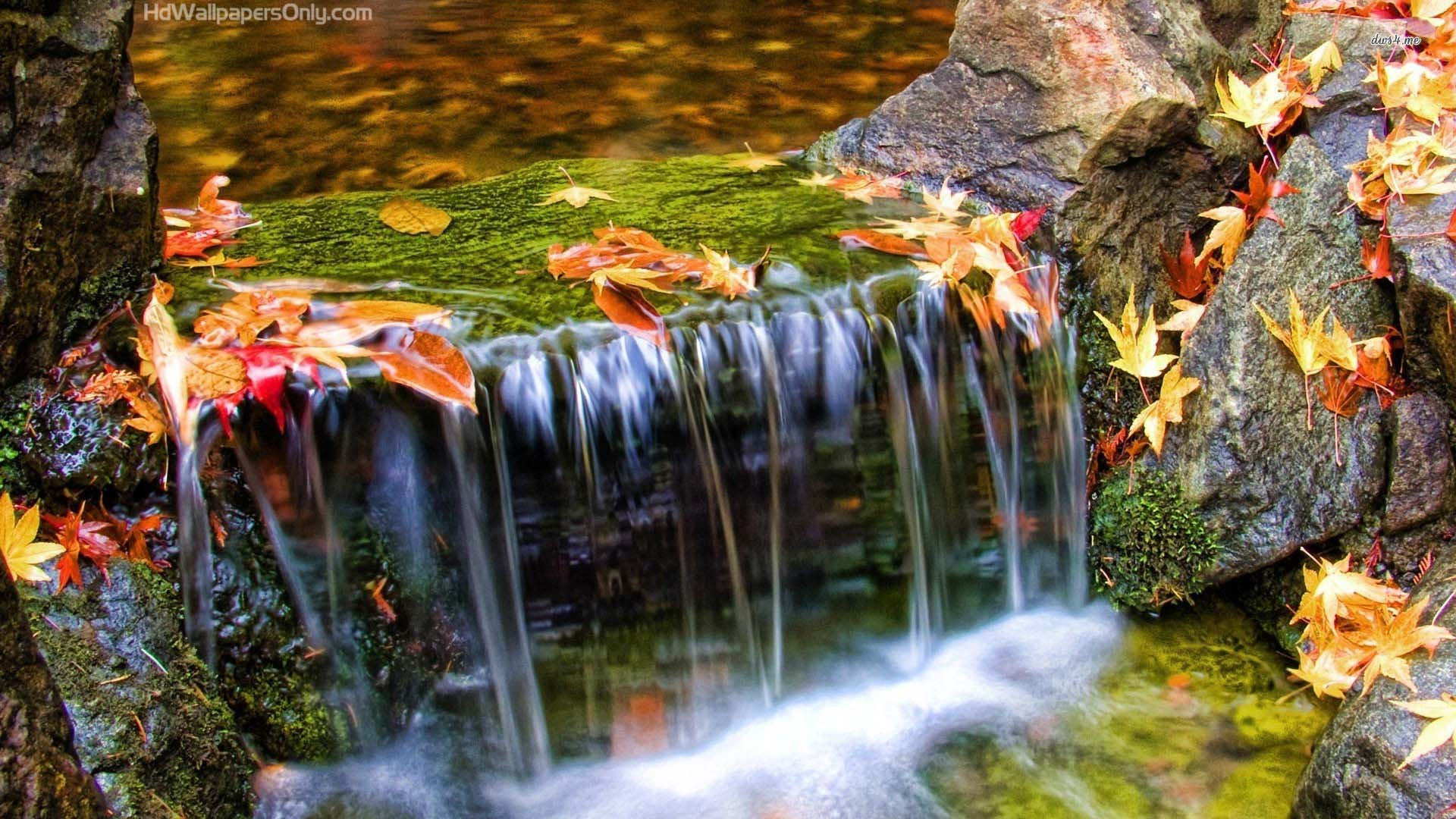 Beautiful Waterfall In Autumn