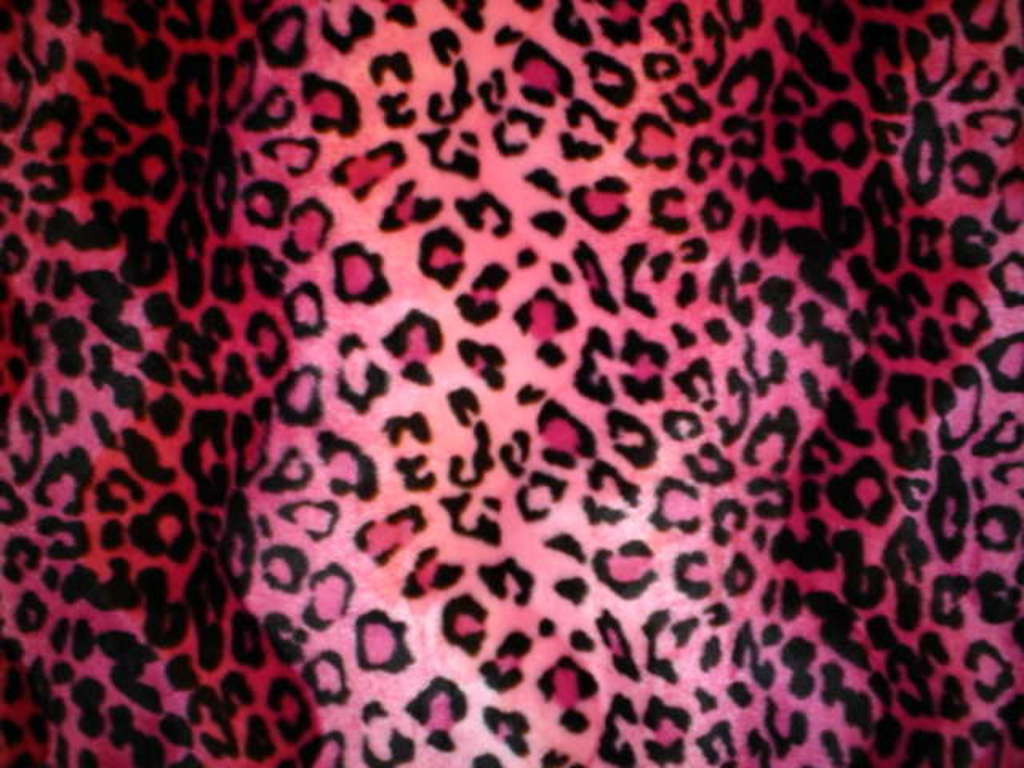 Pink Zebra And Cheetah Wallpaper