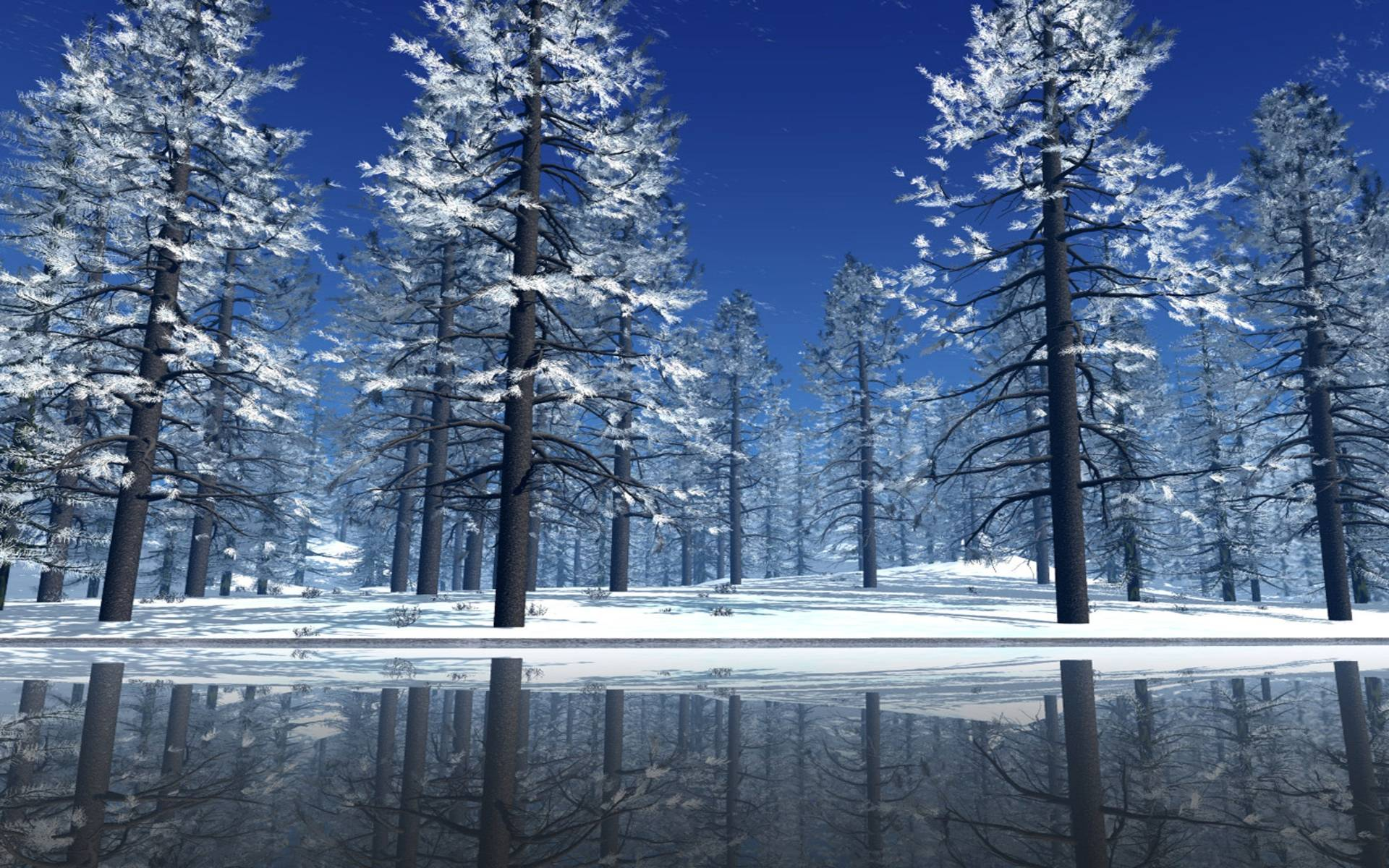 pin snow wallpapers trees - photo #5
