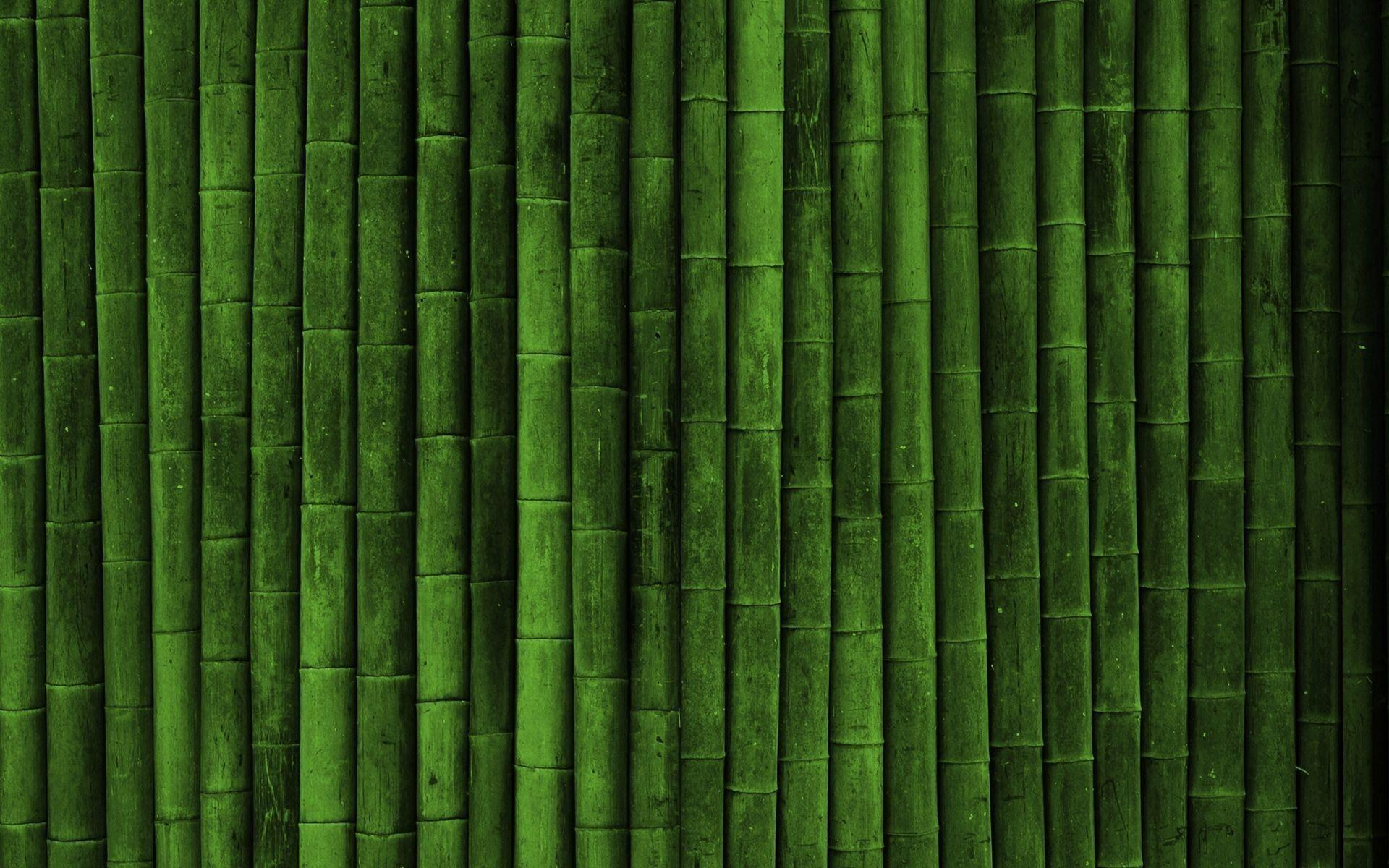 bamboo wallpaper by doantrangnguyen - photo #5