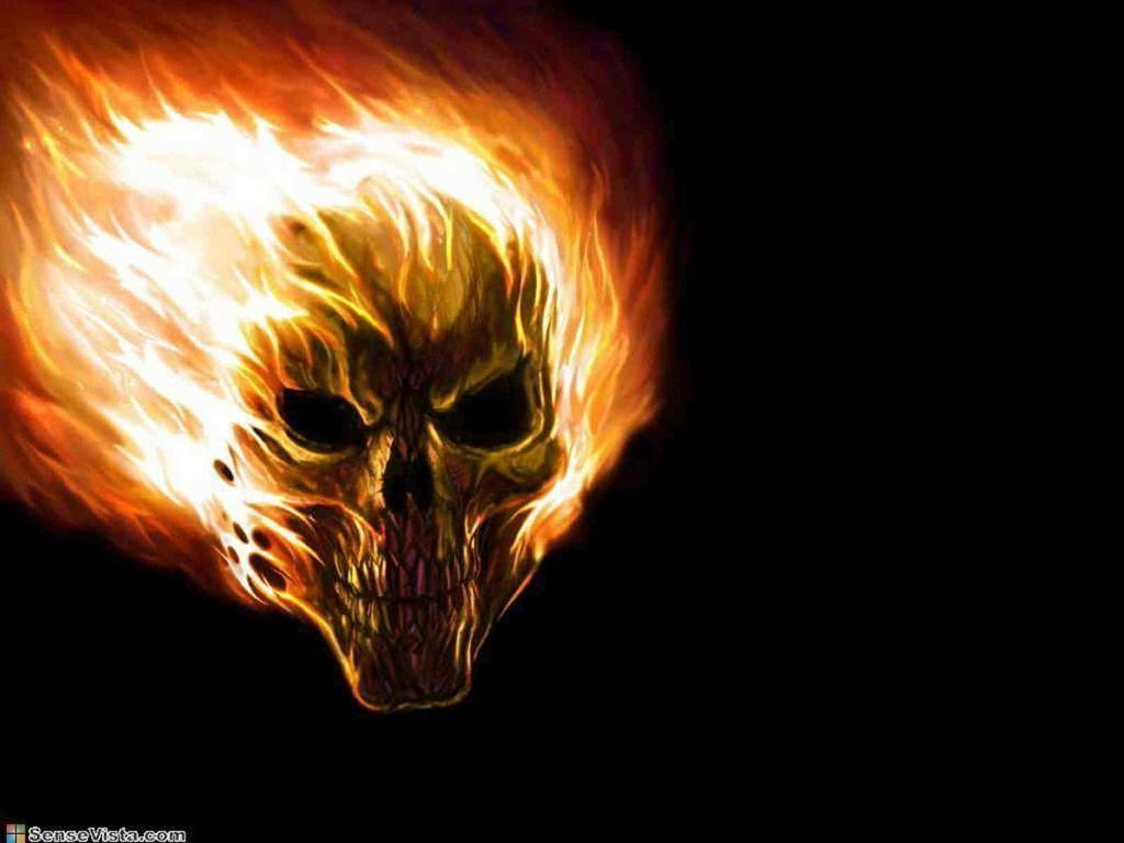 Wallpapers For > Fire Skull Wallpapers Desktop