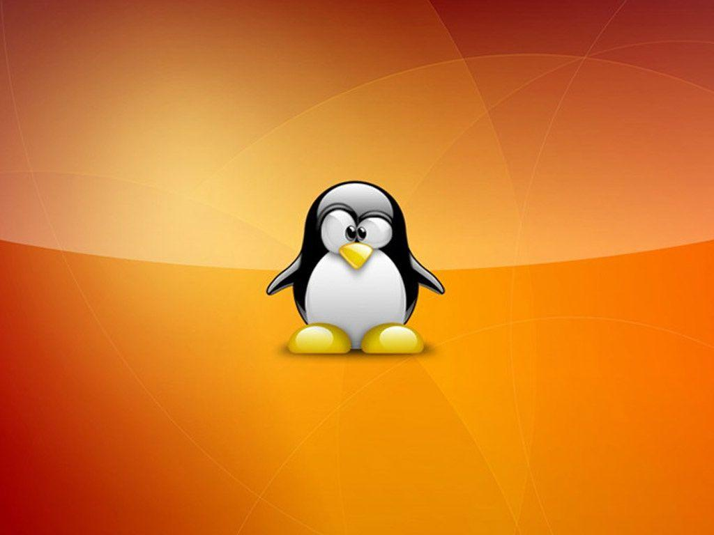 Linux Penguin Wallpaper | coolstyle wallpapers.