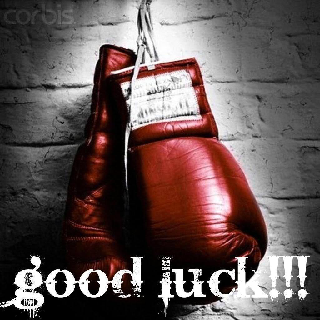 Images For > Everlast Boxing Gloves Wallpaper
