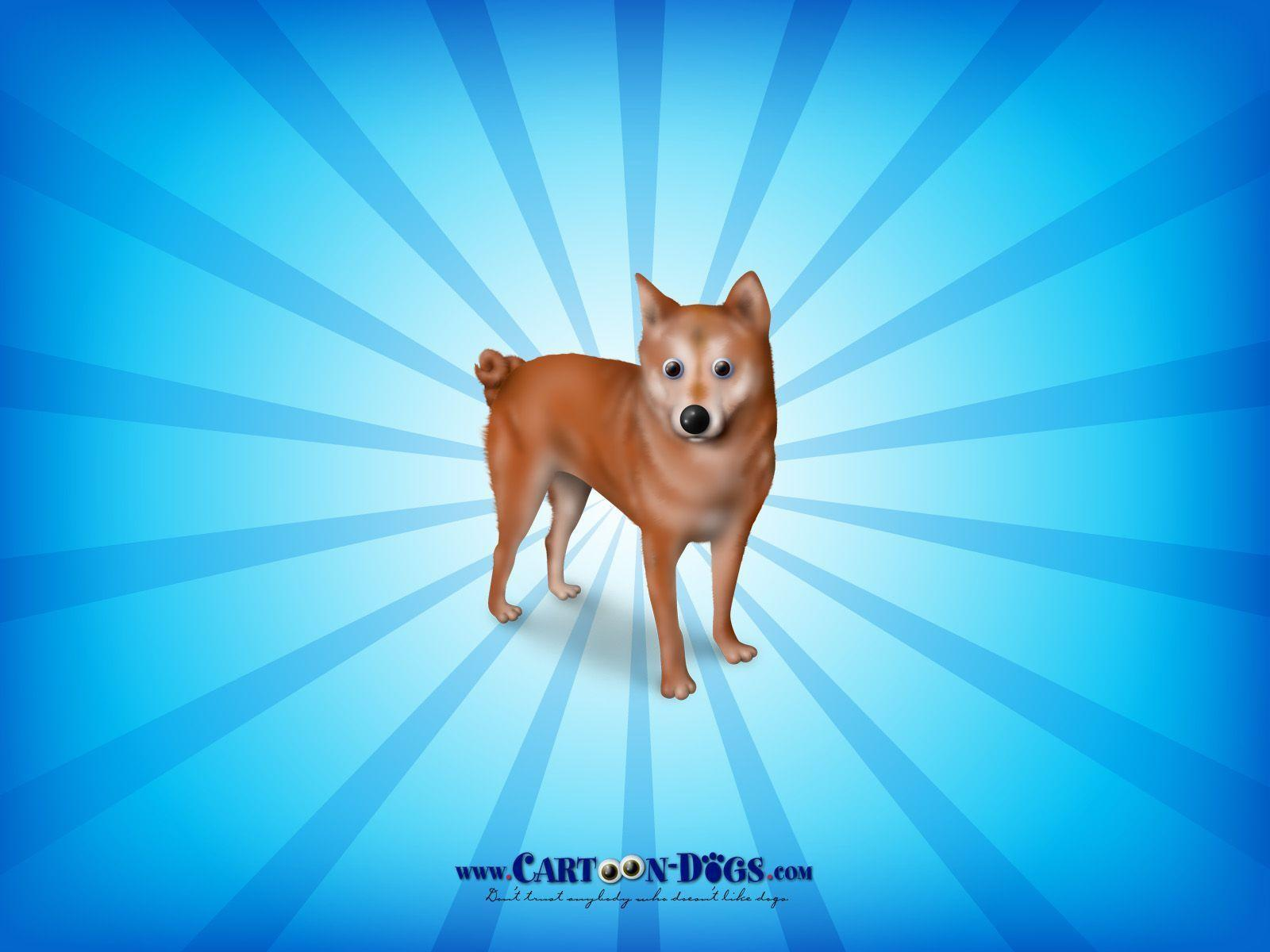 Caveman Show Fsu : Shiba inu wallpapers wallpaper cave