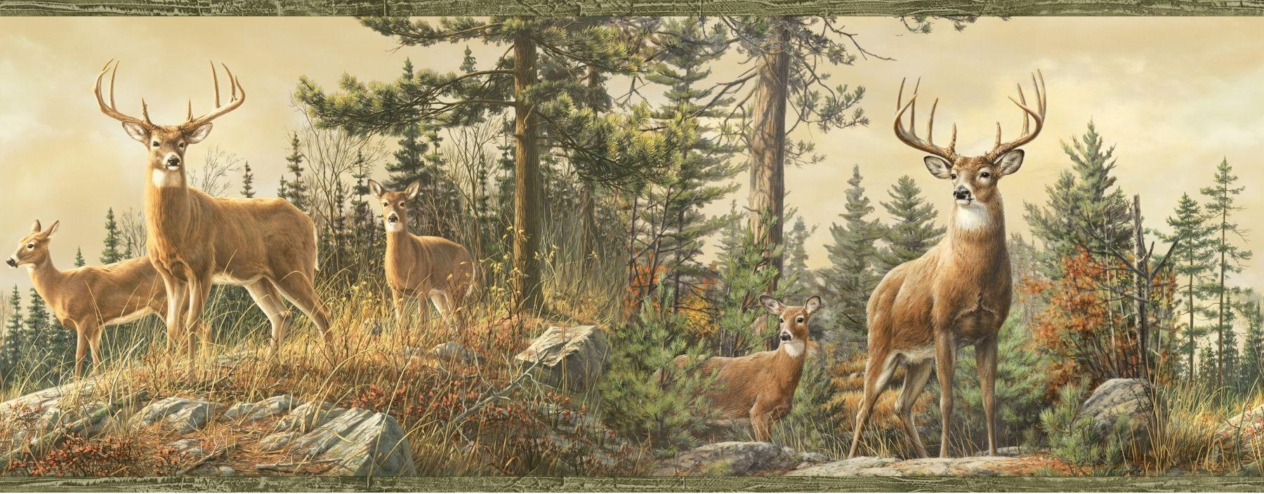Whitetail Crest Deer Wallpapers Border