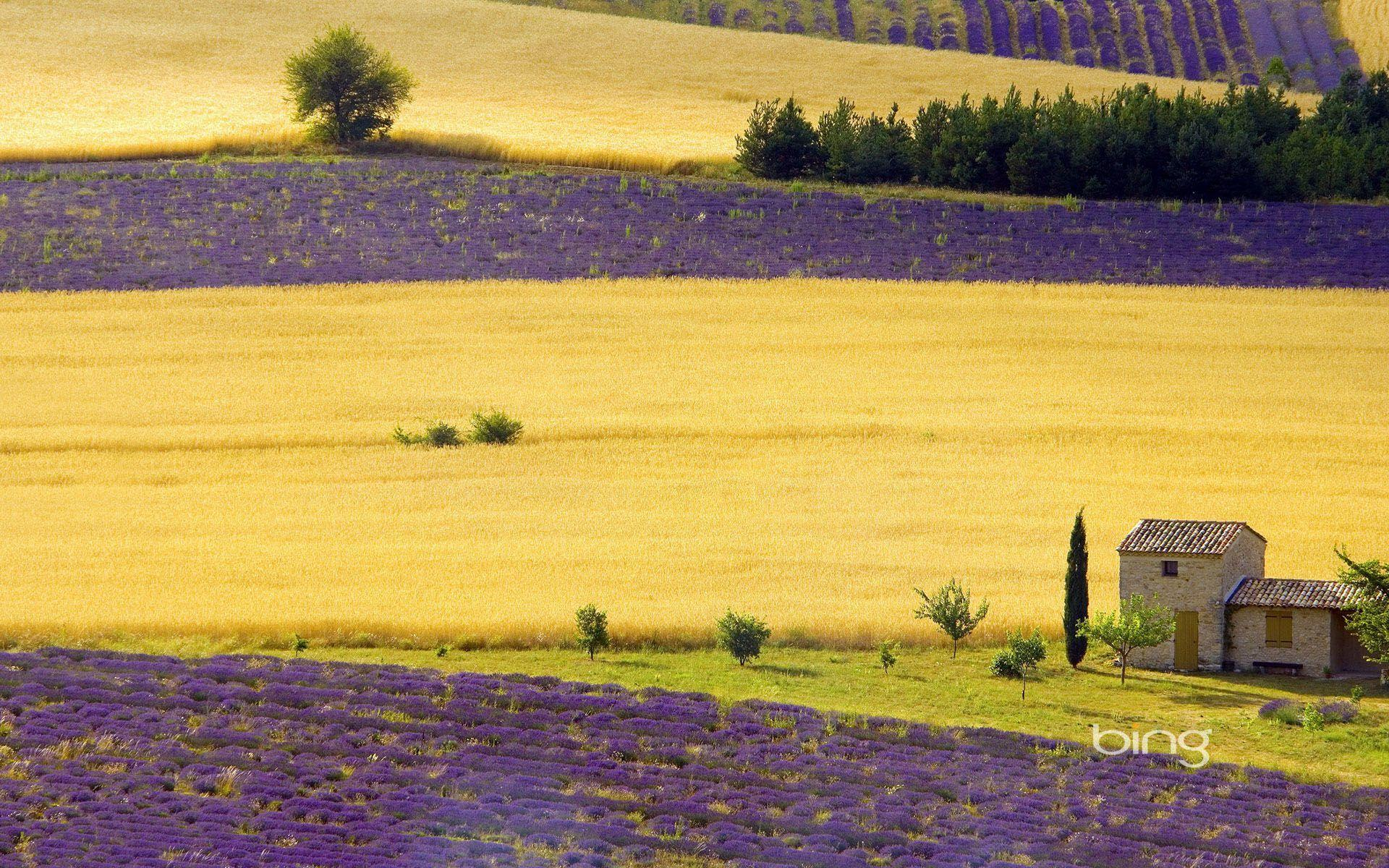Provence wallpapers wallpaper cave for Ete wallpaper