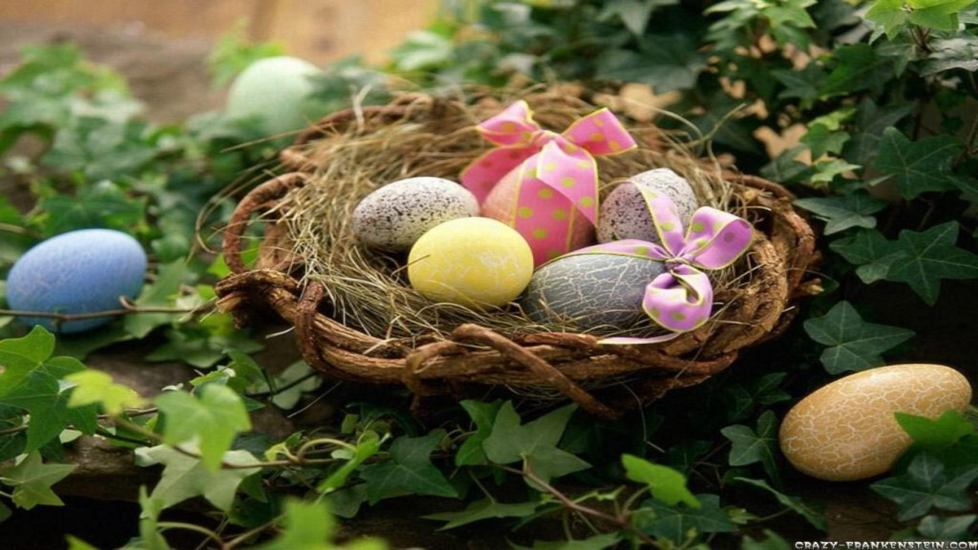 Egg nest and english ivy easter wallpapers free desktop backgrounds