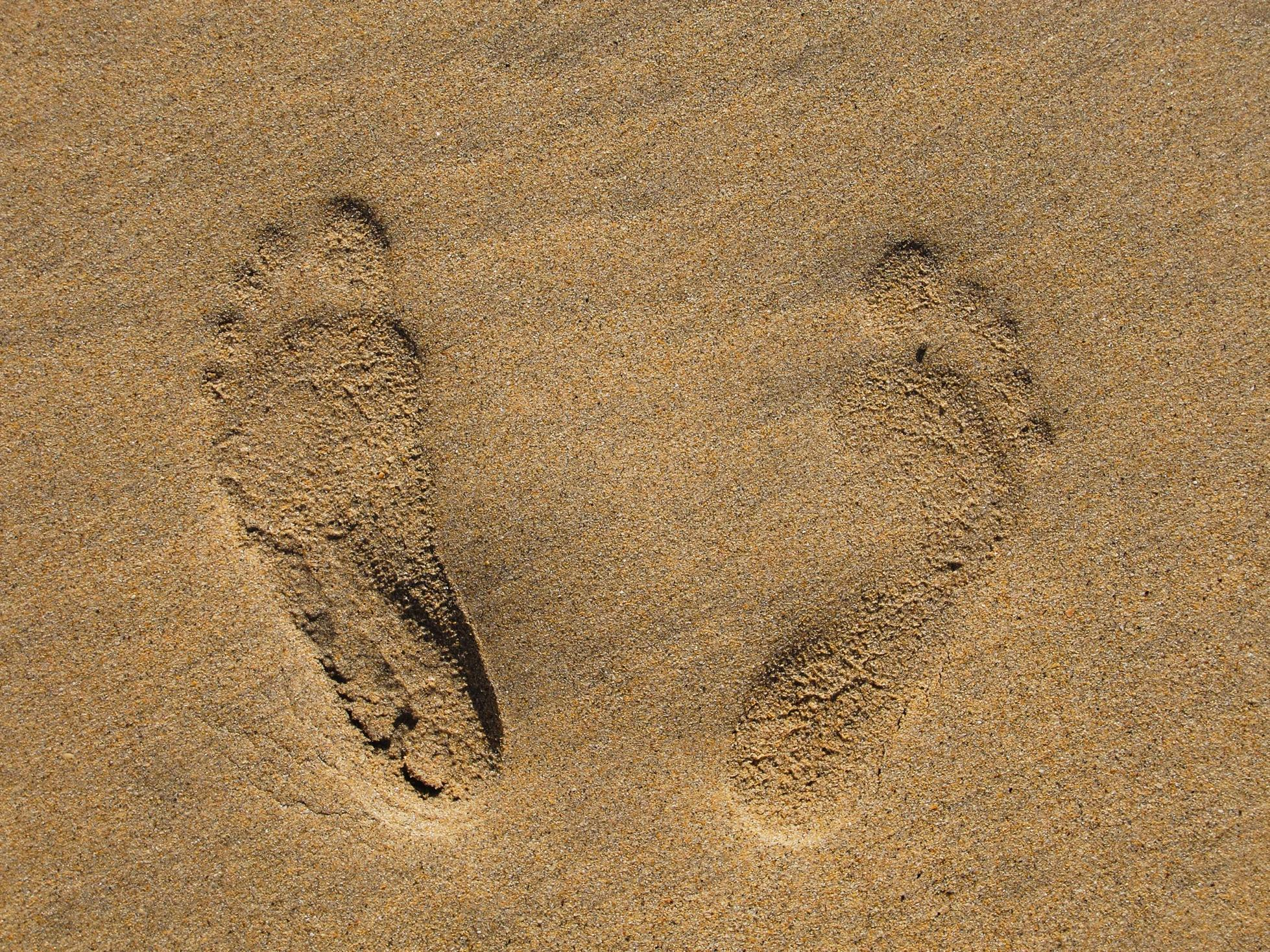 Horse hoof prints in the sand