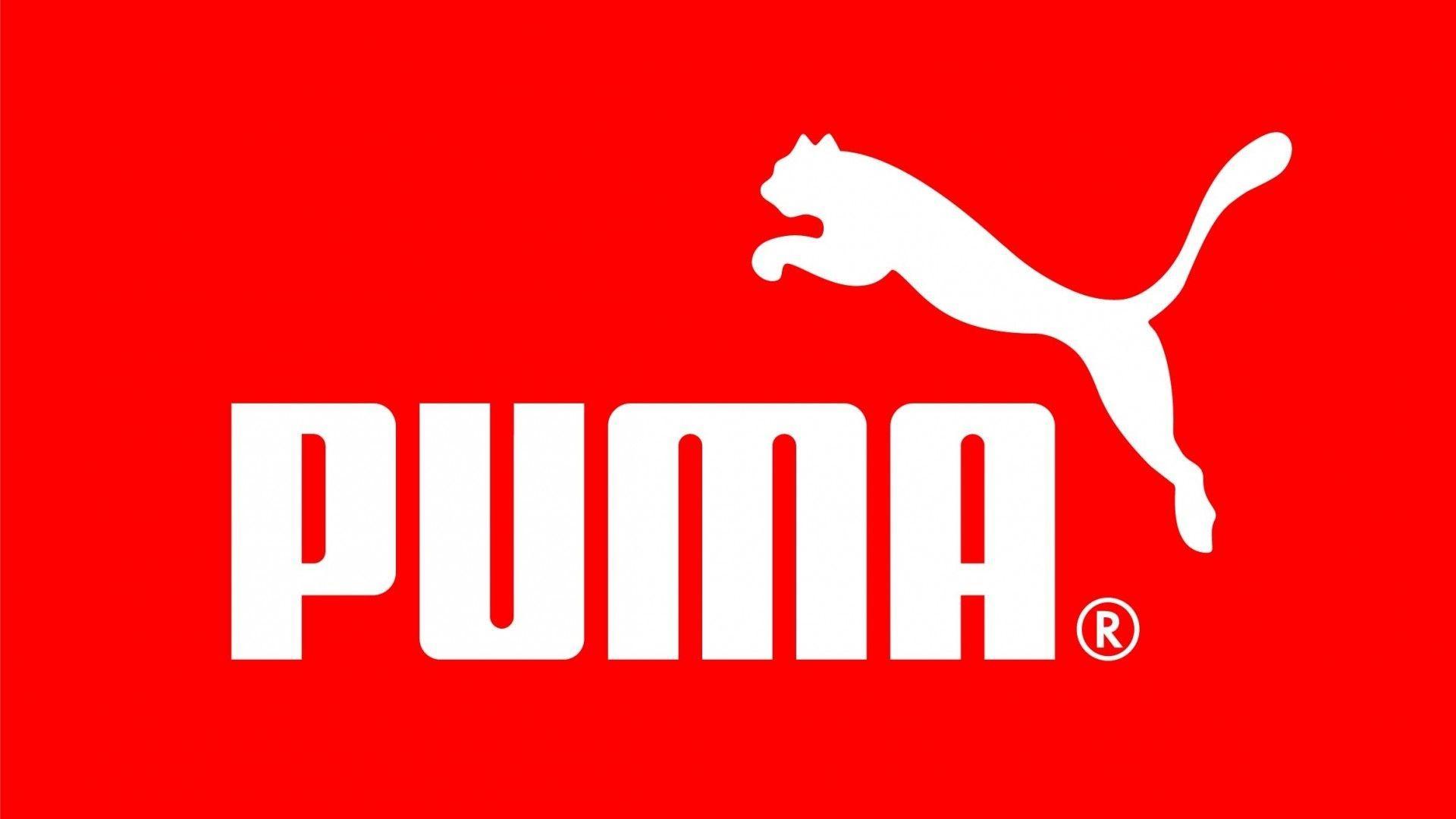Puma Wallpaper 16477 1920x1080 px