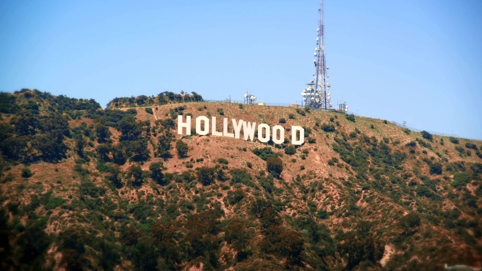 Hollywood Sign Backgrounds