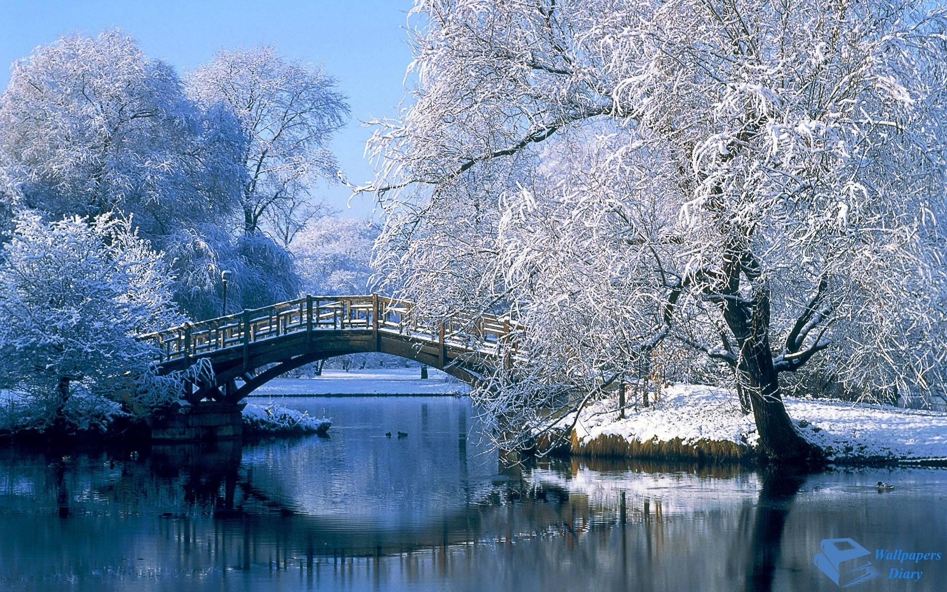 Beautiful Snow Wallpapers Wallpaper Download HD