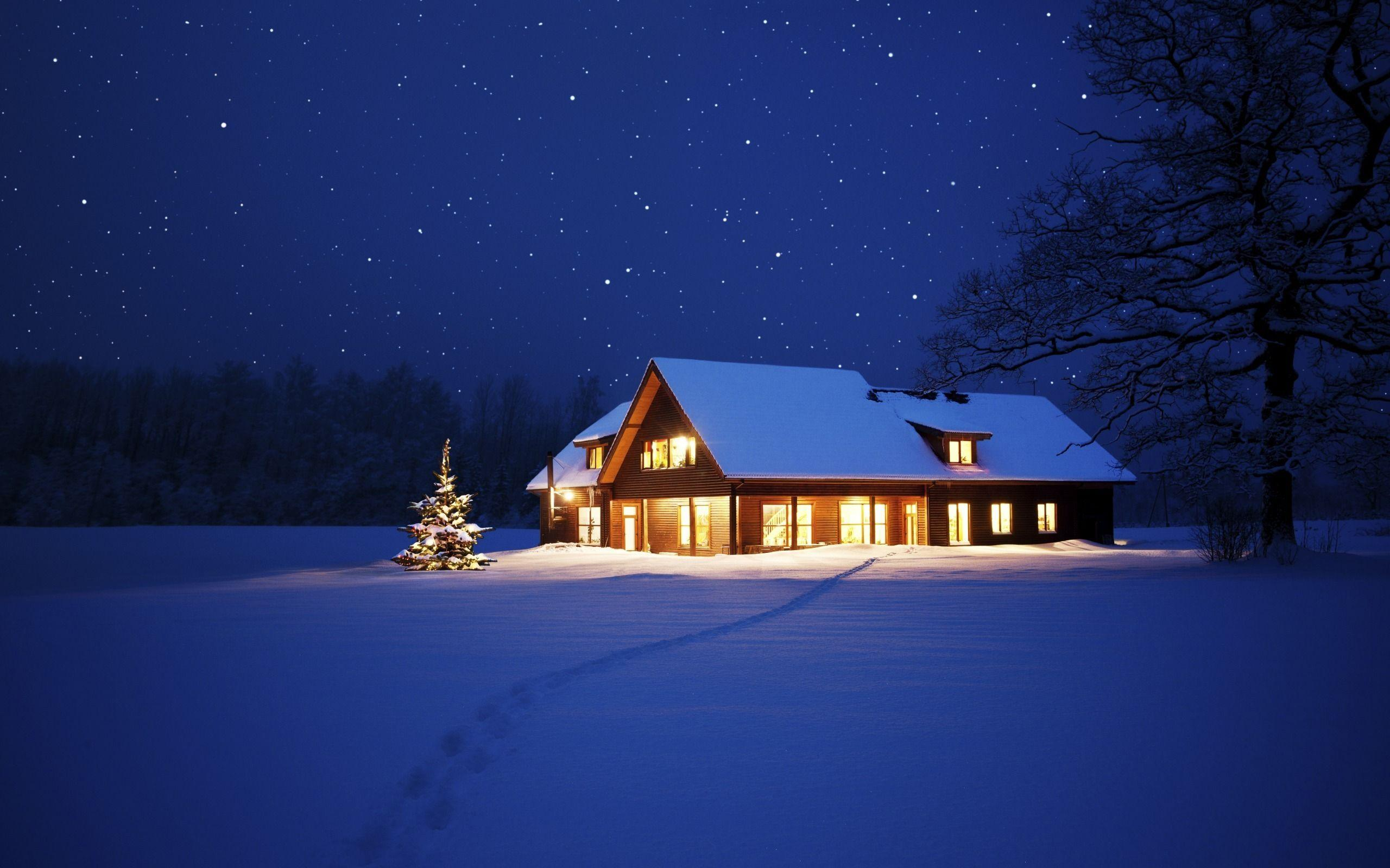 Pin Night Winter Lights Trees Sky Snow Nature Hd Wallpapers