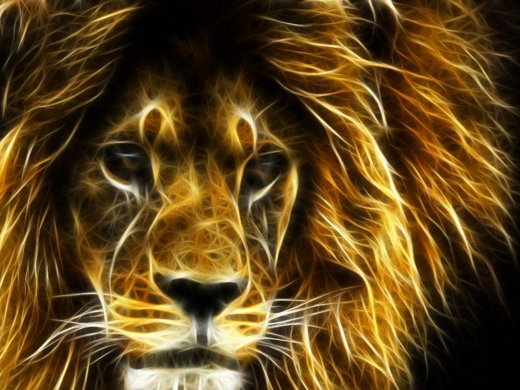 30 Undomesticated Lion Wallpapers - Pics Champ