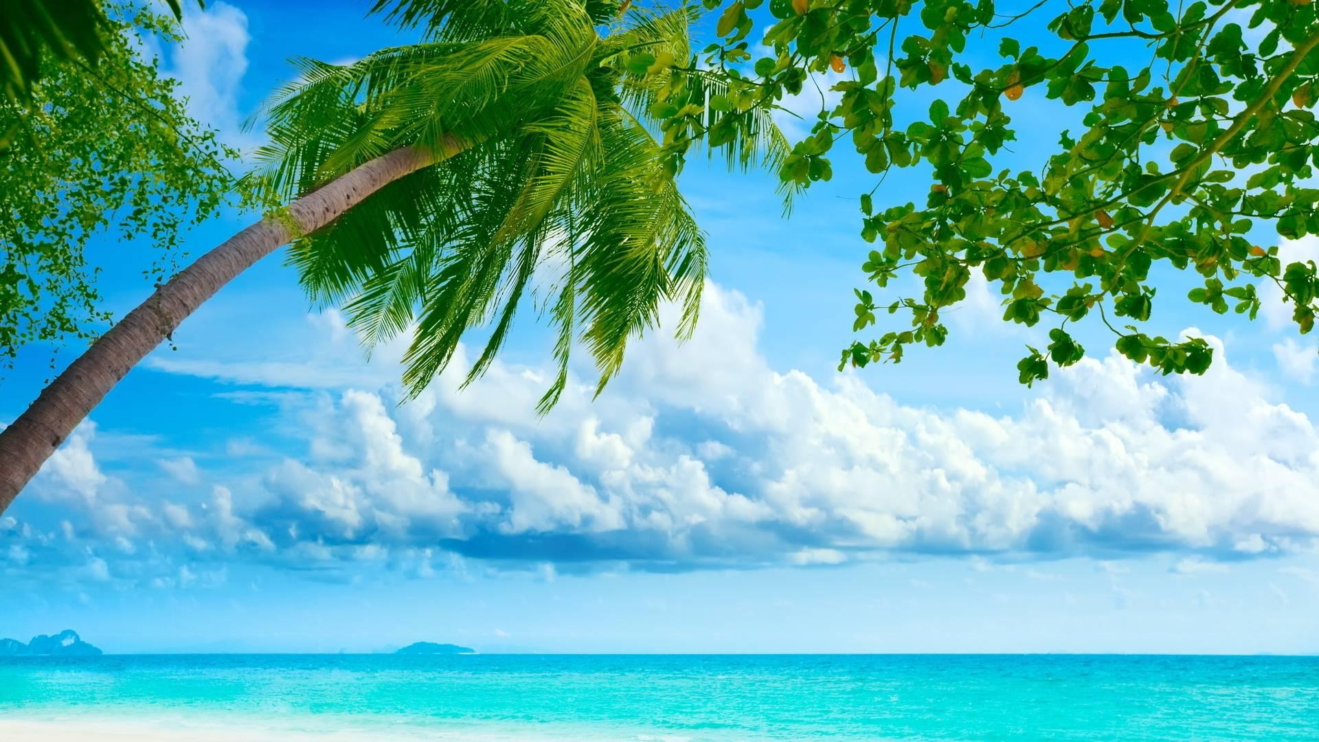 Summer Day Wallpaper Desktop Hd Cool 7 HD Wallpapers