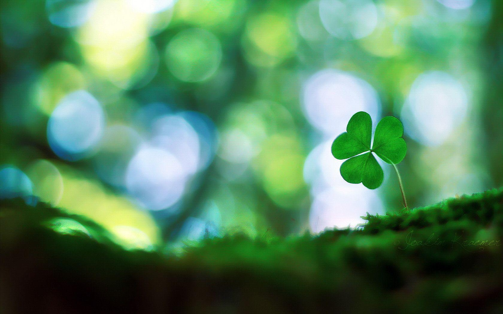 simple st patrick wallpaper - photo #39