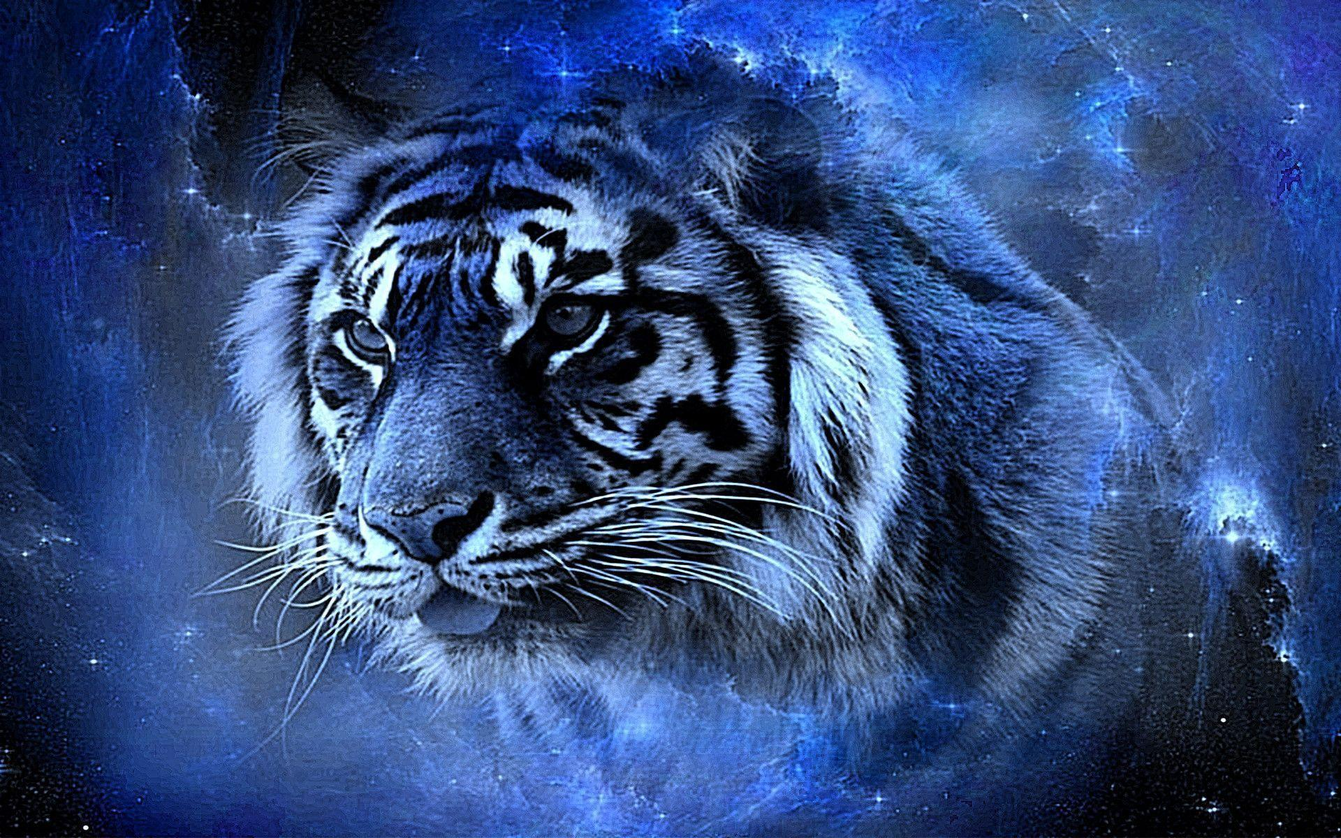 Cool Tiger Backgrounds - Wallpaper Cave Beautiful Tiger Wallpapers Desktop