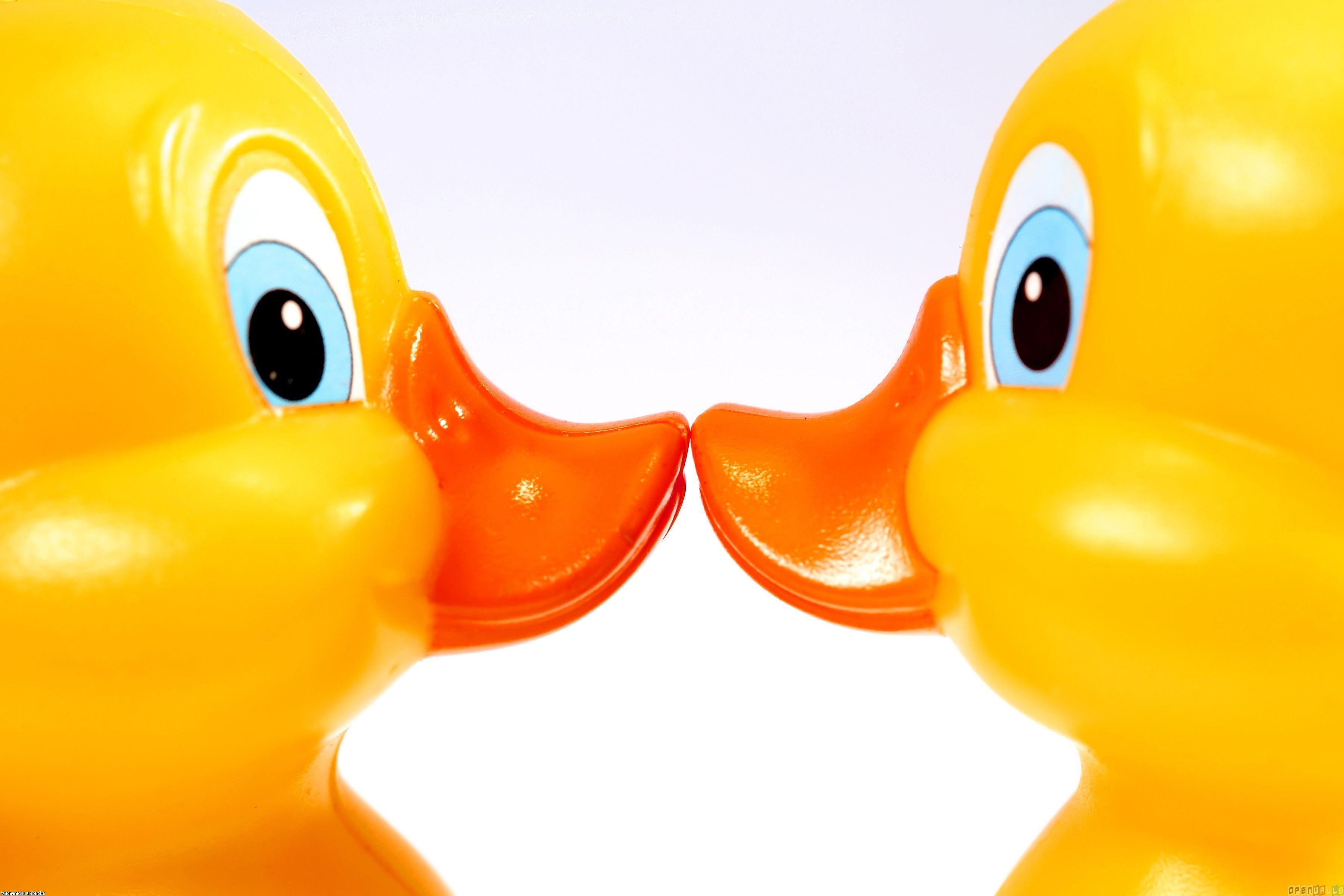 rubber duck wallpaper - photo #12