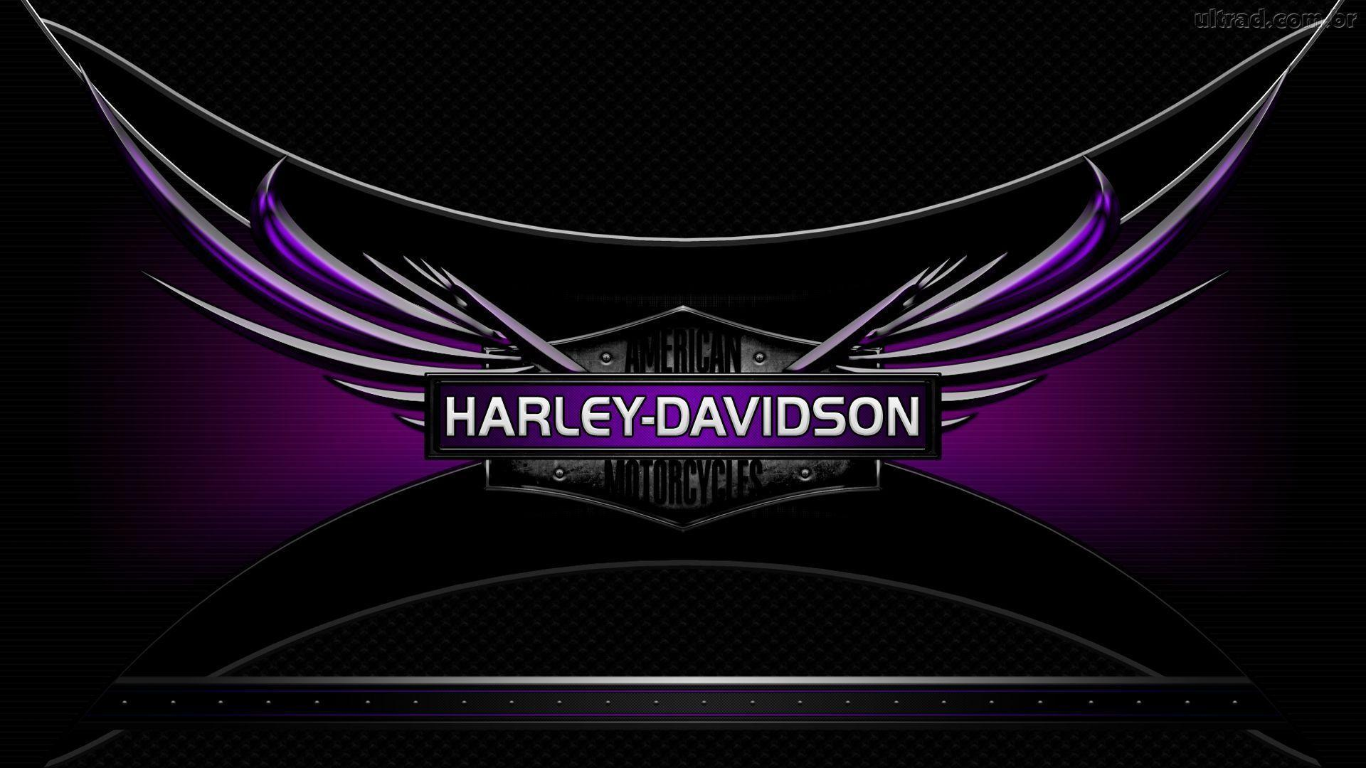 harleydavidson logo wallpapers wallpaper cave