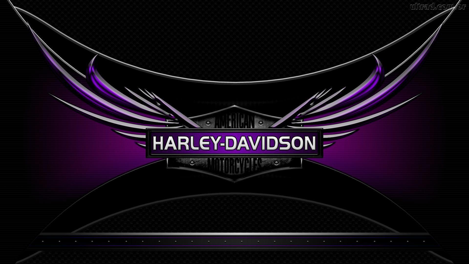 harley davidson logo wallpapers wallpaper cave harley davidson logo wallpaper free harley davidson logo wallpaper free