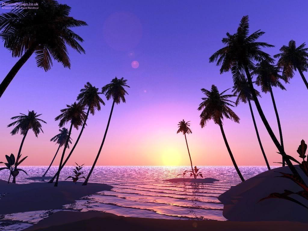 Palm Tree Desktop Wallpapers - Wallpaper Cave