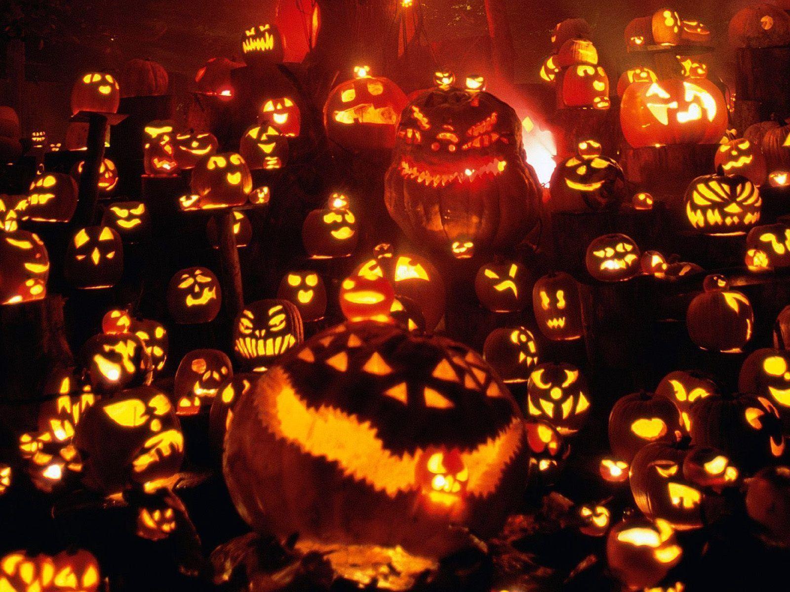Halloween Pumpkin Wallpapers Wallpaper Cave